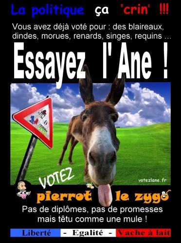http://le-grand-duduche.cowblog.fr/images/Pierrot.jpg